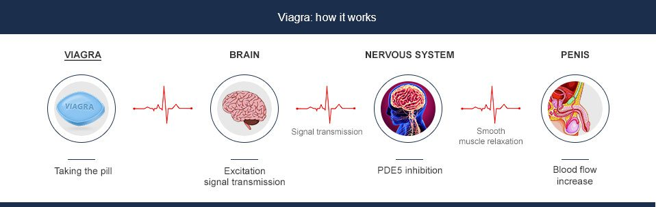viagra effects europe-pharm-en